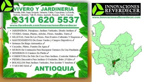 ⭐ JARDINEROS, Paisajismo, Diseño Jardines, Verticales, Jardi