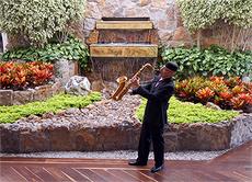 Saxofonista para Cocteles