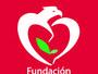 Fundación Generación Paz